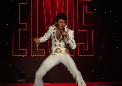 Mark as The Party Elvis – Tribute Act | UK