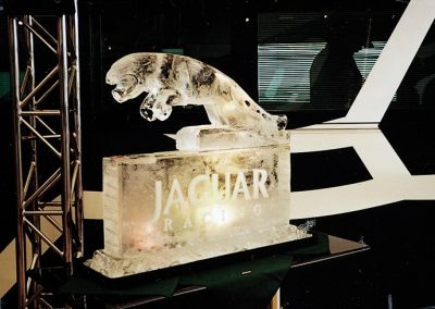 Creations – Ice Sculptures & Ice Luges | UK