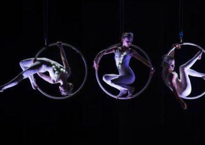 aerial_hoop_company3