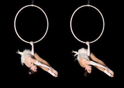 aerial_hoop_company5