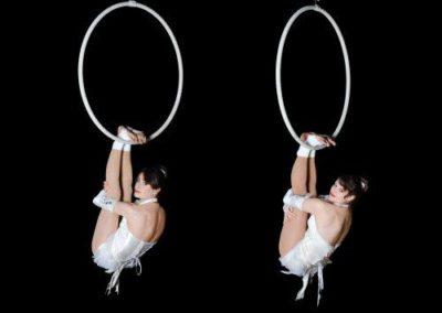 aerial_hoop_company6