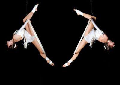 aerial_hoop_company7