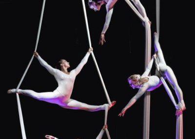 aerial_silks_acrobats6