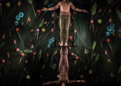 Amazon trapeze leopard and hunter