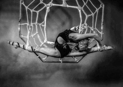 delias_spider3