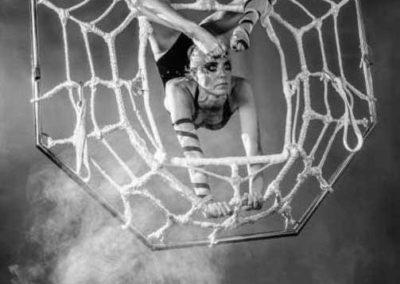 delias_spider4