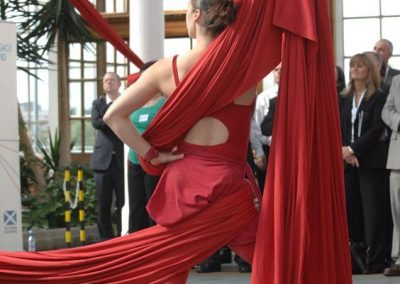 Aerial Silks & Trapeze: Edinburgh Performers