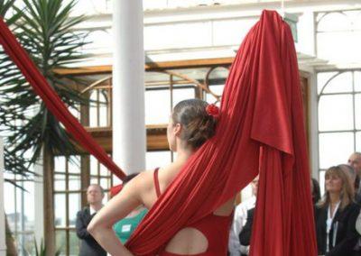 Aerial Silks & Trapeze: Edinburgh Performers