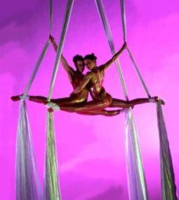 Michele – Aerial Silks & Trapeze Artist | Surrey| South East| UK