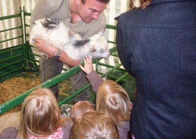 petting_zoo11