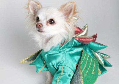 piff_the_magic_dragon9