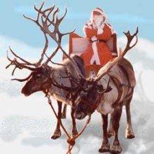 reindeer_for_christmas2