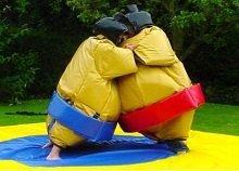 sumo_wrestling2