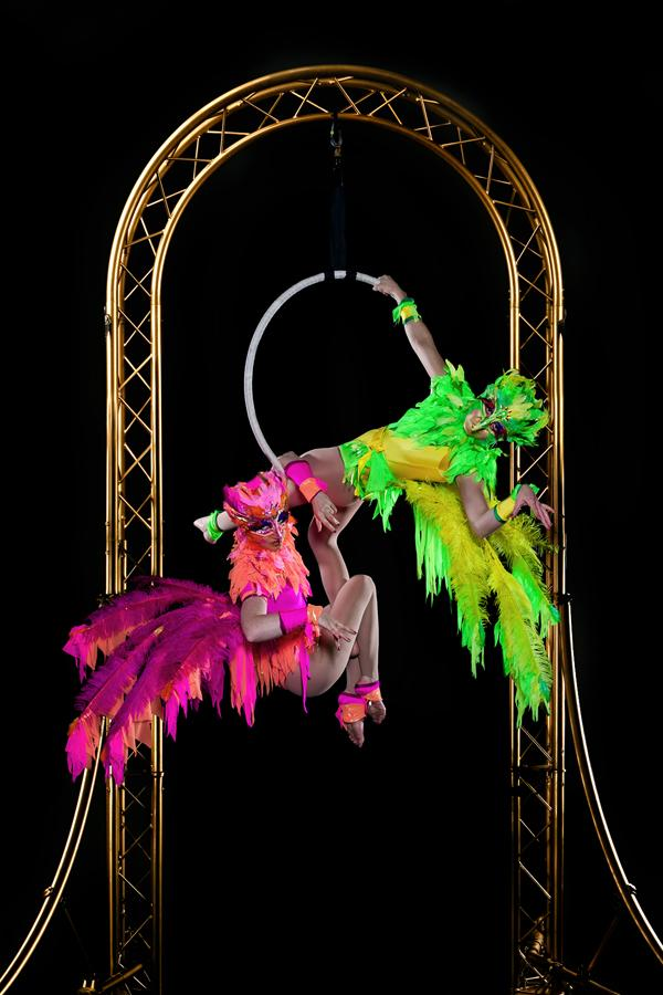 Booking Agent For The Birdcage Free Standing Aerial Hoop