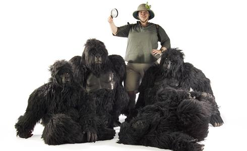 booking agent for gorillas