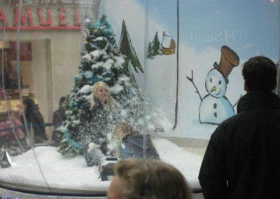 the_snow_globe4