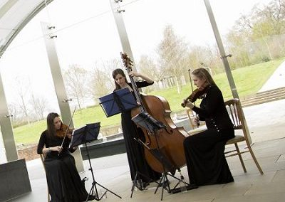 Topaz – Electric & Acoustic String Trio & Quartet | Surrey | South West | UK
