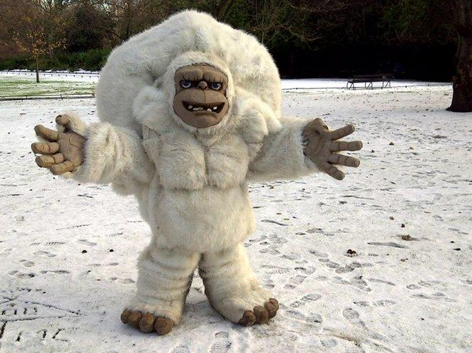 booking agent for yeti
