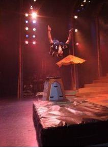 beth-acrobatics-free-runner4