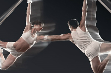 book aerial dance company circus show