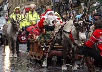 Christmas Reindeer – Reindeer for Hire | Scotland & UK