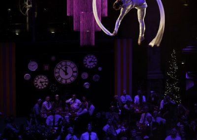 dream-aerial-silks-hoops1