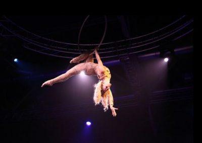 dream-aerial-silks-hoops3