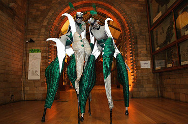 hire curious stilt walkers