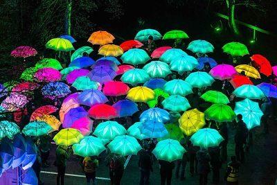 The Umbrella Project – LED Umbrellas  | UK