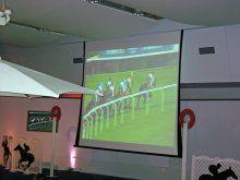 virtual-animal-races4