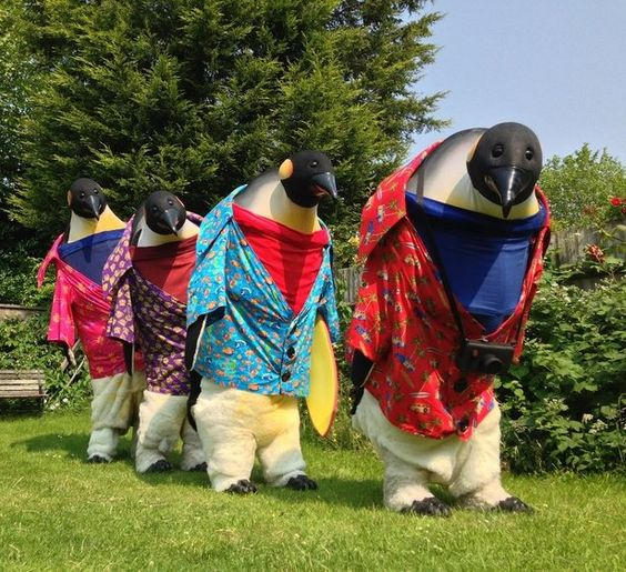 Booking for penguins abroad