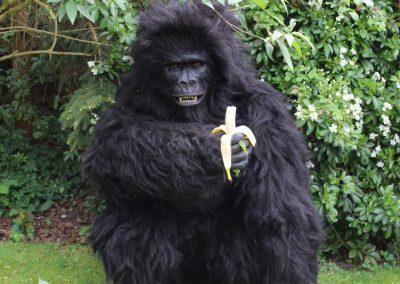 Giant Animatronic Gorilla – Walkabout Animal Act | Worldwide