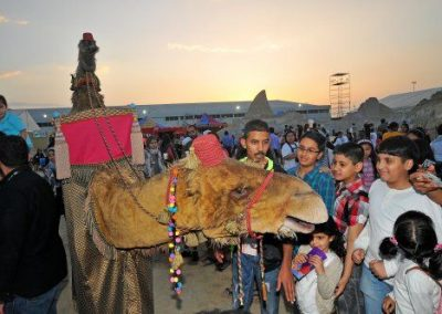 amir-camel-walkabout1