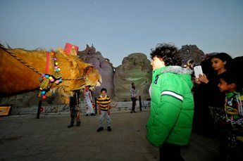 amir-camel-walkabout11