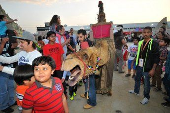 amir-camel-walkabout12