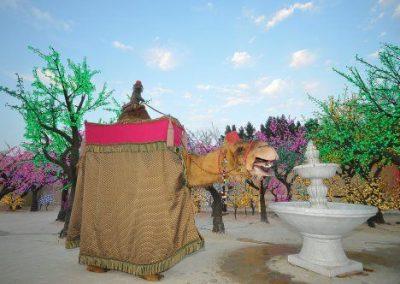 amir-camel-walkabout2