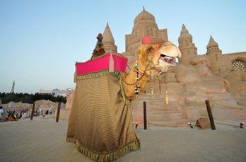 amir-camel-walkabout5