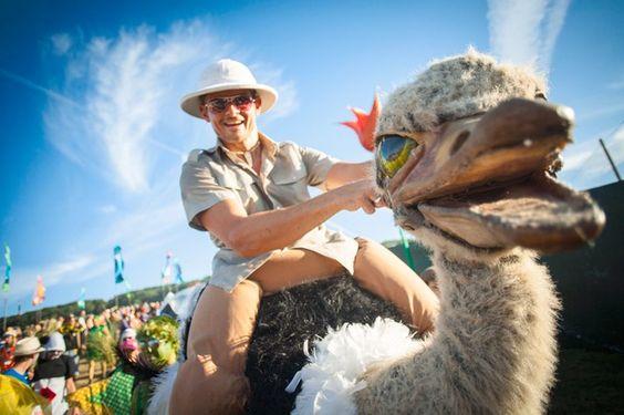 Booking agent for ostrich jockeys