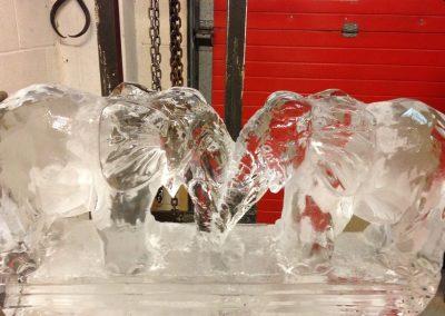 Ice Models – Ice Sculptures & Luges | UK